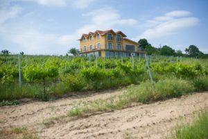 Vino Dessera - Route des vins de Thrace