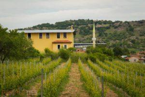 Route des vins turcs - Vino Dessera