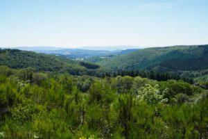 vue paysage morvan